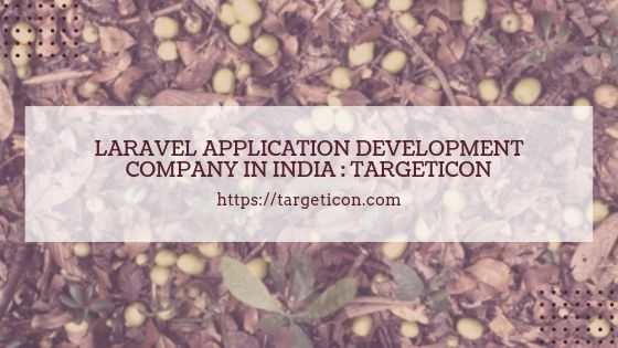 Laravel Application Development Company in India: Targeticon